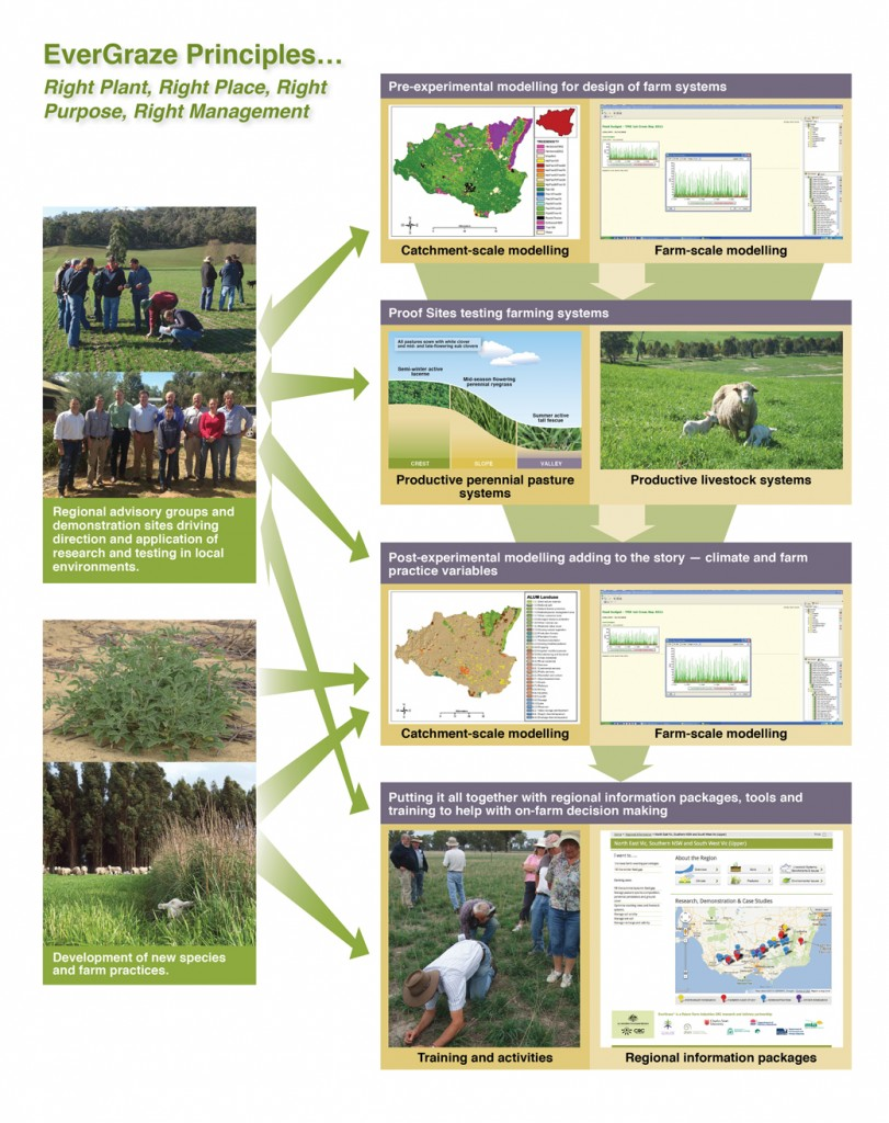 Figure 1: Process in the design and testing of EverGraze Farming Systems for development of relevant messages for farmers