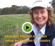 Meredith Mitchell talks about the importance of improving native pastures on hill country