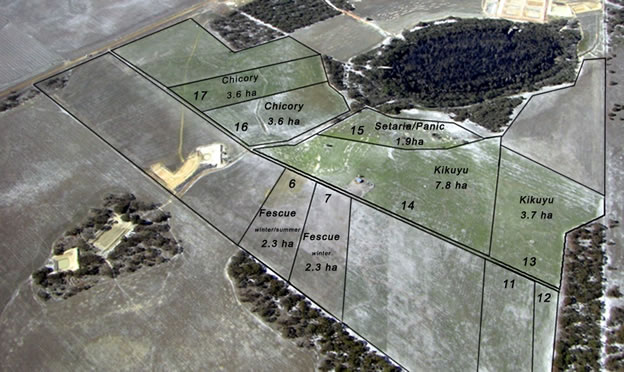 Figure 3. Pasture treatments in 2008