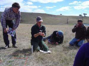 Mark McKew watches on as Julie Andrew (DEPI Ararat) identifies native grasses and discusses control of onion grass at the Warrak Supporting Site