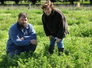 Shaun and Lisa McIntyre used lucerne for summer feed and reducing leakage below the root zone at Dunkeld.