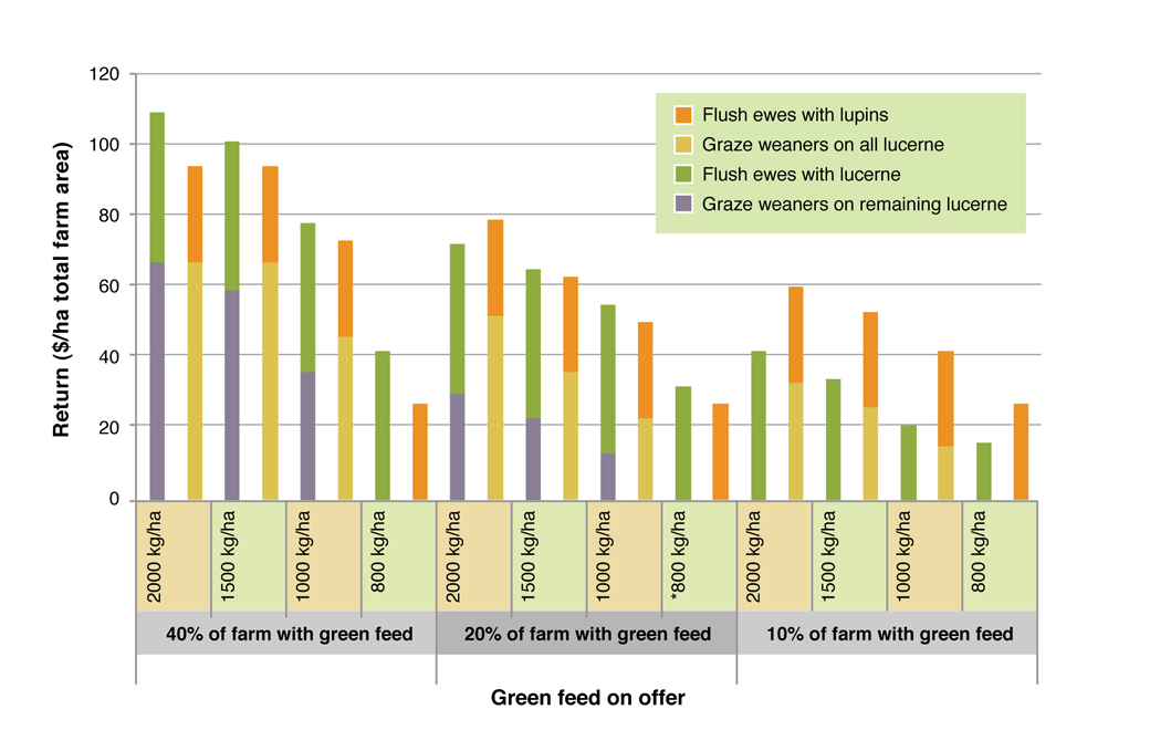 Figure 5. Comparison of returns from flushing ewes and growing out weaners on green feed. See Table 2 for assumptions used in this analysis.
