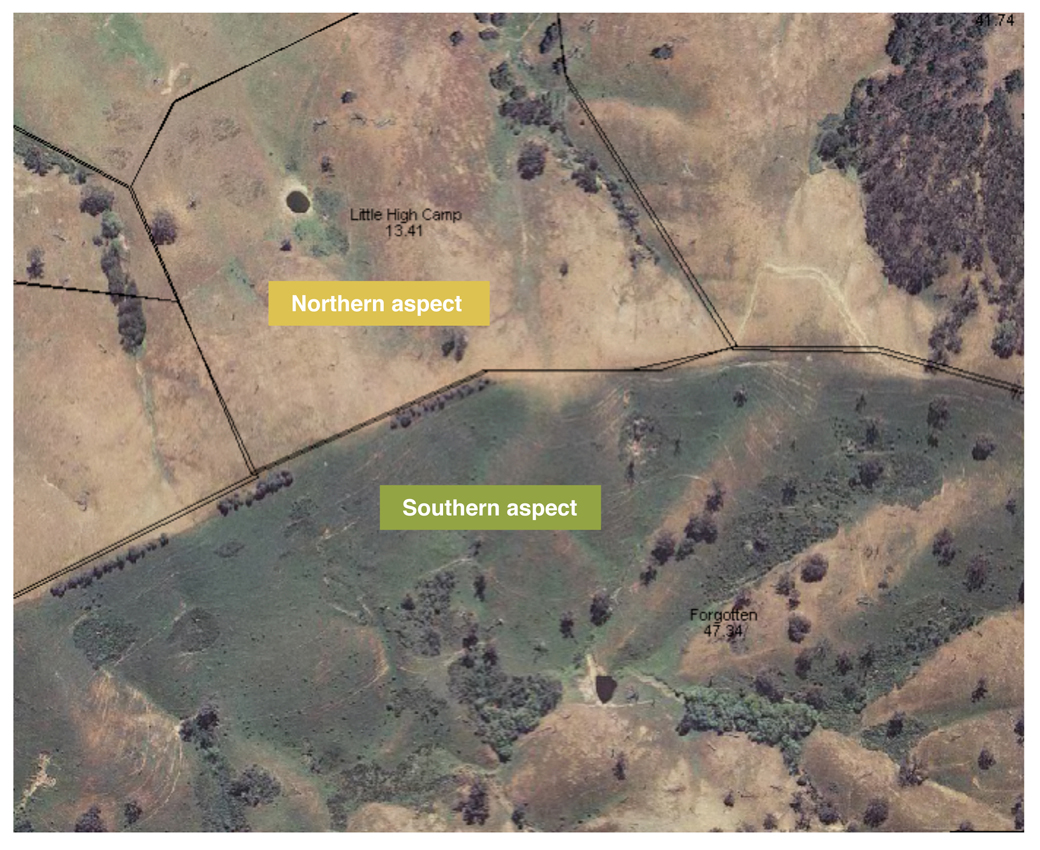 Figure 1. Northern and southern aspects in hill country pastures showing differences in ability to hold onto green feed in late spring/early summer (Bonnie Doon, Victoria)