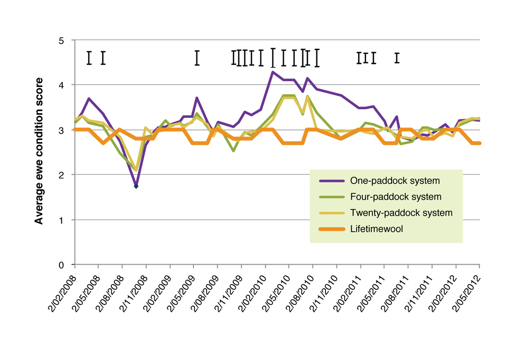 Figure 3. Ewe condition scores for the 1-Paddock, 4-Paddock and 20-Paddock grazing systems, with southern NSW Lifetimewool condition score targets presented. The bars above the graph indicate the amount that treatments need to be different to be significant.