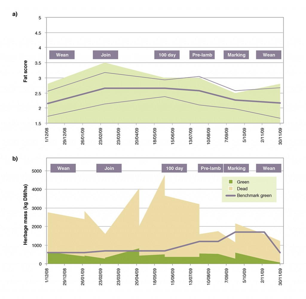 Figure 5. Merino ewes grazing an unfertilised native pasture without supplementation in 2008-09 showed a)  fat score profile that was well below target scores, because b) the level of green dry matter available was below Prograze targets for green herbage mass (see Prograze ReferenceTable 7)