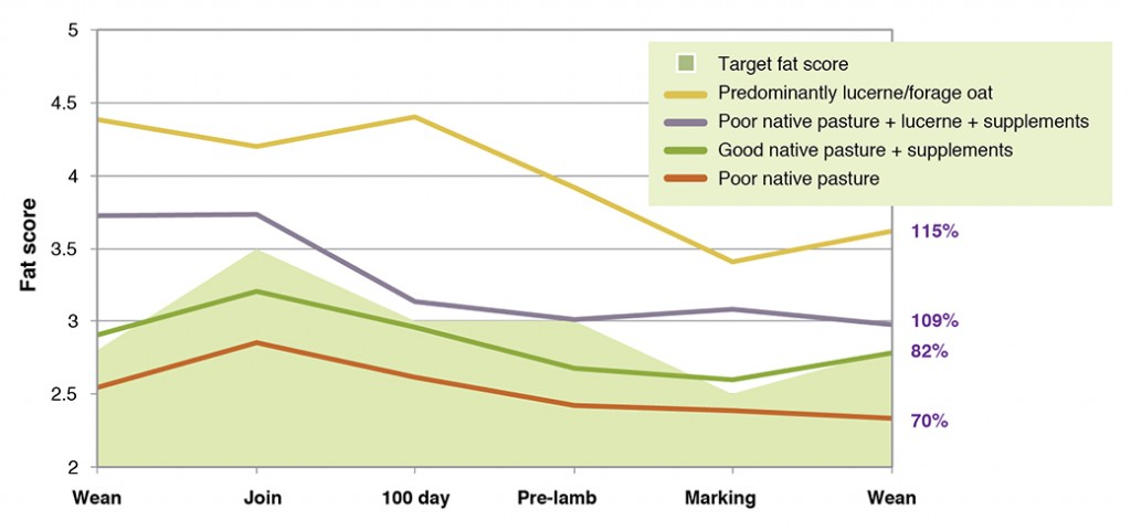 Figure 6. Actual fat score (FS) and target FS (grey shaded) of autumn-joined ewes from weaning to weaning grazing a range of different pasture types monitored at Proof Site Farms in 2009. Final weaning percentage (%) is shown for each grouping.