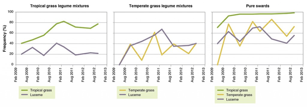 Figure 6. Plant frequencies (%) of tropical grass (Premier digit), temperate grass (Kasbah cocksfoot), and lucerne (Venus) grown as mixtures or pure swards ( May 2009 – Sep 2012).