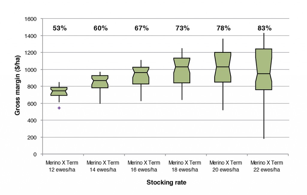 Figure 1.  Box plots of gross margins ($/ha) at different stocking rates for the August lambing Merino x Terminal system on the EverGraze Perennial Ryegrass System at Hamilton  (Warn 2011).  Box plots represent median, range and interquartile range, + indicates outliers. The percentages above the box plots indicate pasture utlisation.