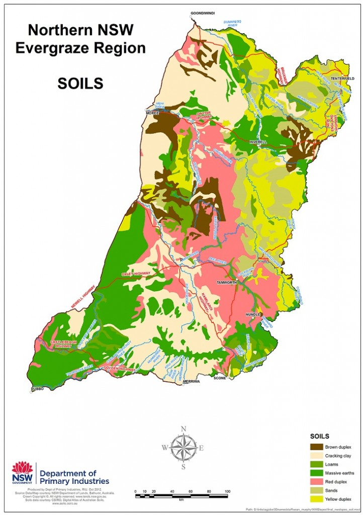 Figure 1. Soils of the Northern NSW EverGraze region