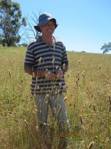John Keogh in the under-grazed phalaris paddock after a good season in 2010