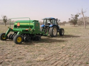 Direct drilling sub clover into lucerne/fescue pasture