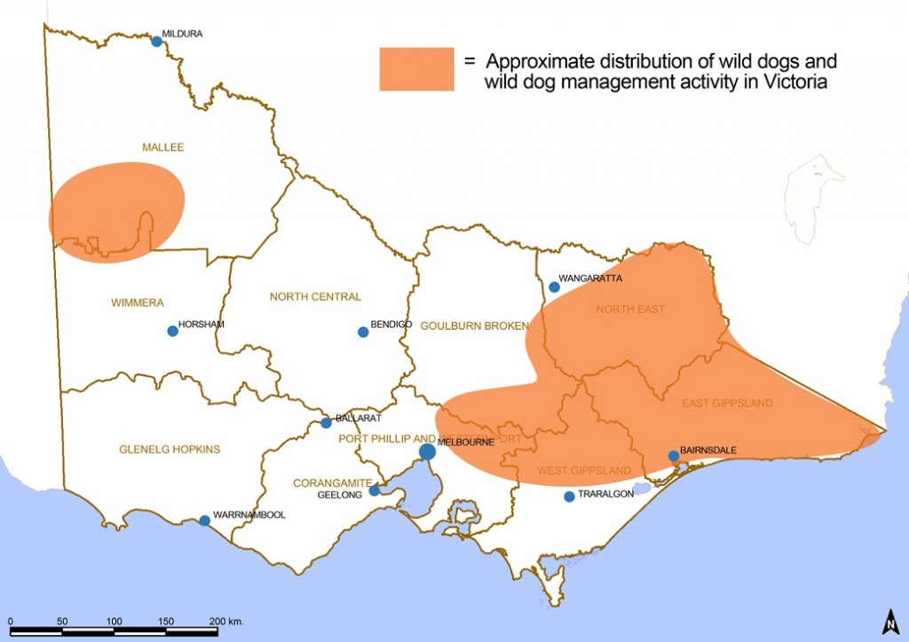 Figure 2. Distribution and activity of wild dog management in Victoria