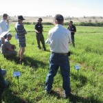 Pastoria EverGraze Supporting Site
