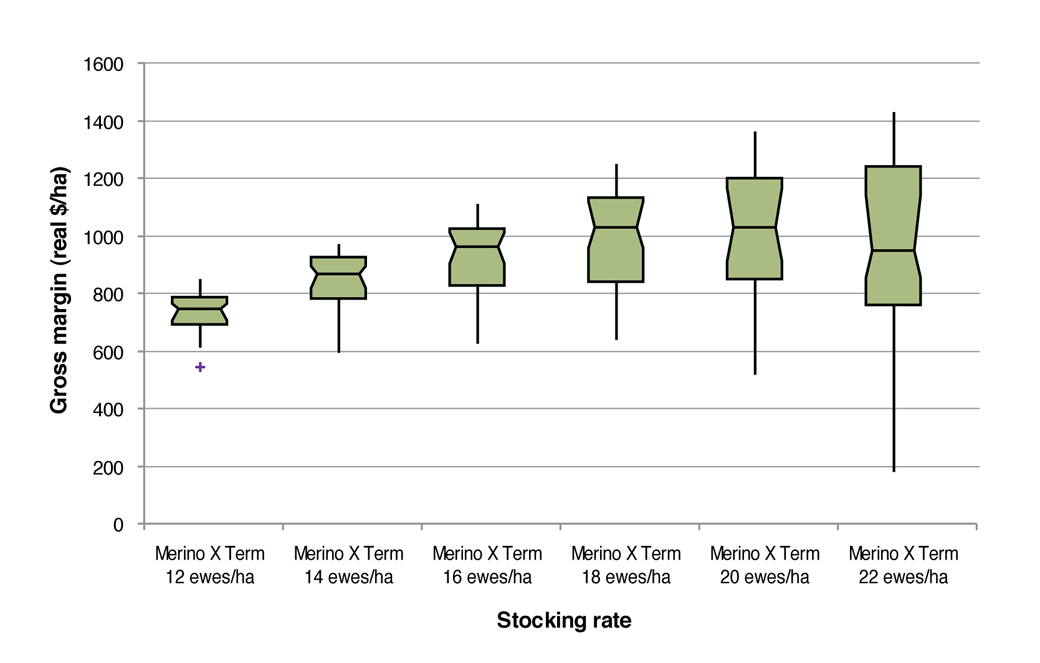 Figure 3: Box plots of gross margins ($/ha) at different stocking rates for the August lambing Merino x Terminal system on the EverGraze Perennial Ryegrass System (Warn 2011). Box plots represent median, range and interquartile range, + indicates outliers.
