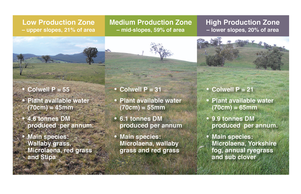 Figure 1: Production zones at Panuara, showing the differences in soil phosphorus (Colwell P converted from measured Bray P, Plant Available Water (PAW) and differences in native perennial grass species).