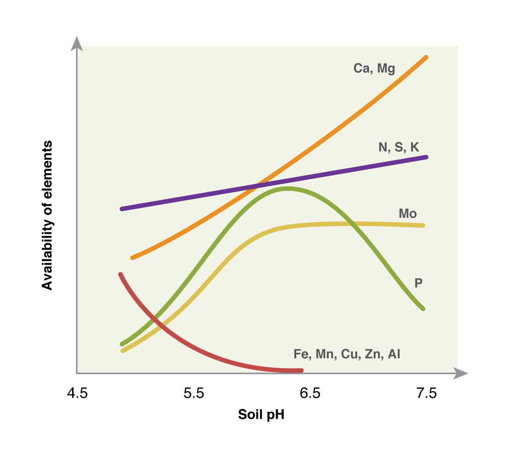Figure 2: availability of plant nutrients with soil pH (CaCl), DAFWA Bulletin 4784, 2009