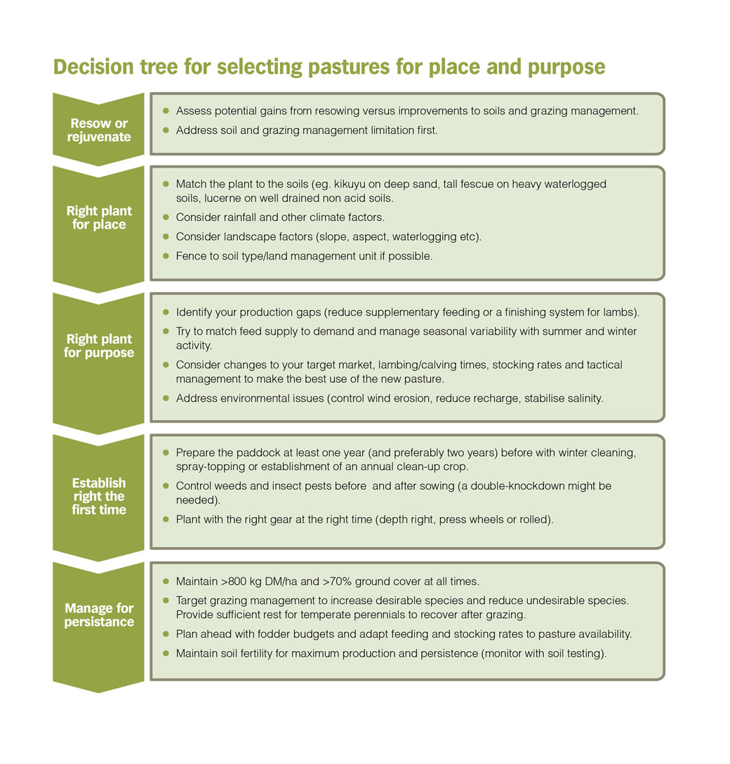 Decision Tree for selecting pastures for place and purpose