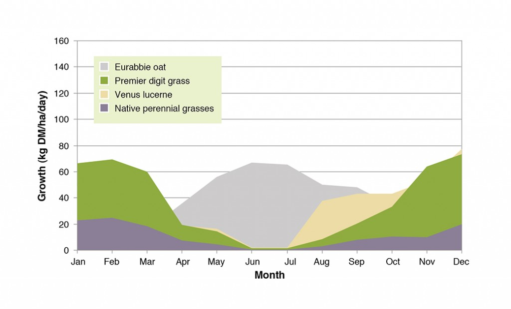 Figure 1. Average pasture growth rates for a range of species on the North-West Slopes.